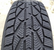 Taurus Winter 225/55R17 101V
