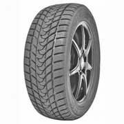Delinte Winter WD1 235/45R17 97T