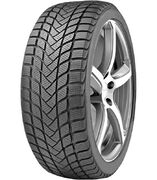 Delinte Winter WD6 225/50R17 98H